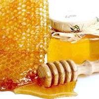 Лікування медом та продуктами бджільництва
